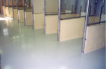 https://www.vseal.com/media/catalog/product/cache/1/image/9df78eab33525d08d6e5fb8d27136e95/k/e/kennel_concrete_epoxy_after_1.jpg
